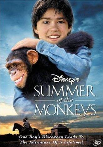 猴子的夏天是一部怎样的作品