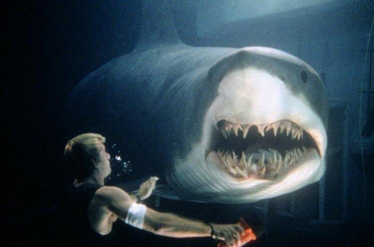 变异狂鲨是一部怎样的影片