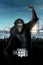 猿人争是一部怎样的影片