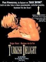 土耳其狂欢好不好看