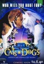 猫狗大战2011是什么类型的电影