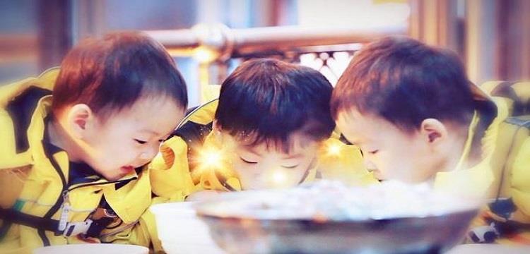 大韩民国万岁三胞胎参加的是什么节目?
