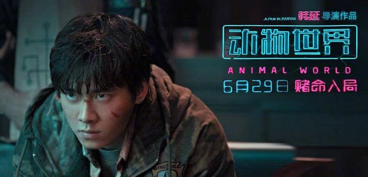 李易峰和周冬雨的最新电影是什么?