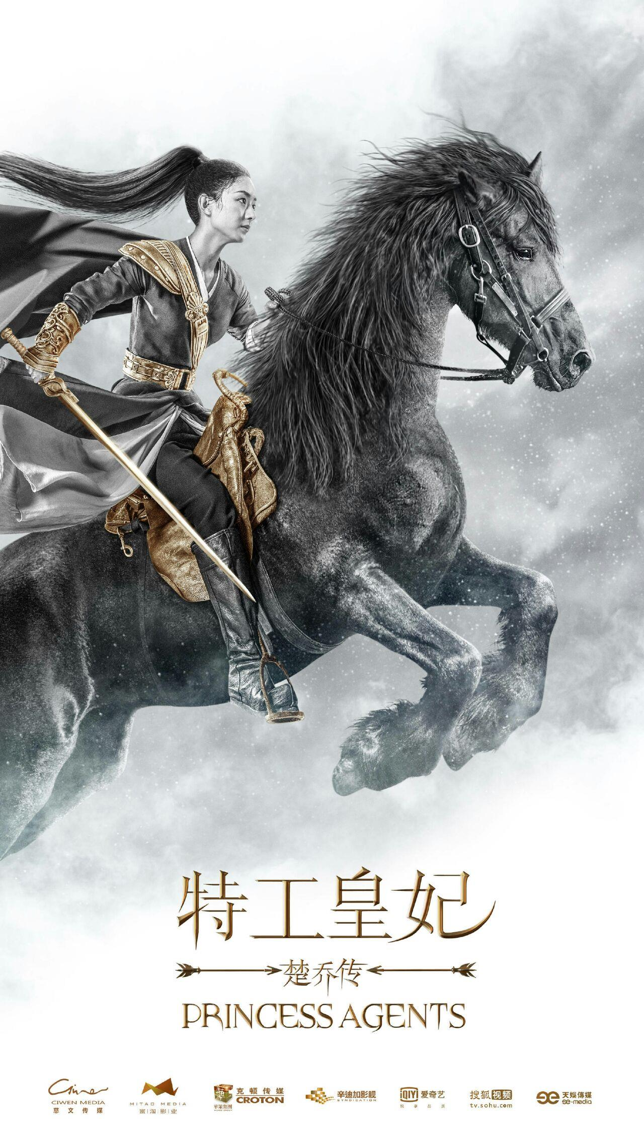 《特工王妃》 主演:赵丽颖 林更新
